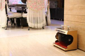 Máy đánh giày mẫu mã đẹp