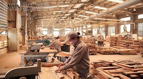 bảo trì bảo dưỡng máy sấy khí ở các xưởng gỗ