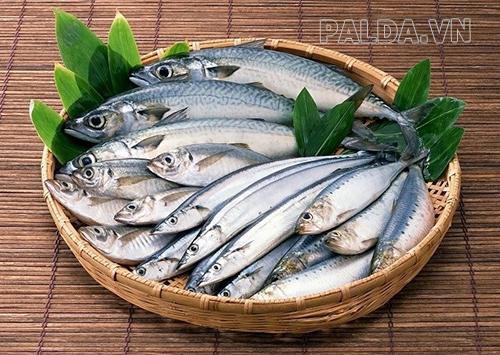 Cá tươi nhờ bảo quản cá biển tốt