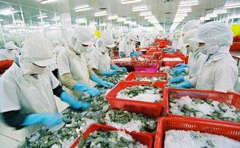 công nghiệp chế biến lương thực thực phẩm