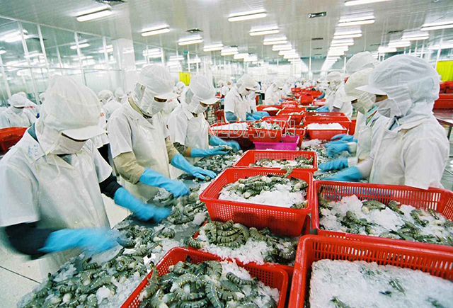 chế biến hải sản đang là một thế mạnh