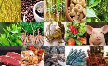 công nghệ thực phẩm sạch và an toàn