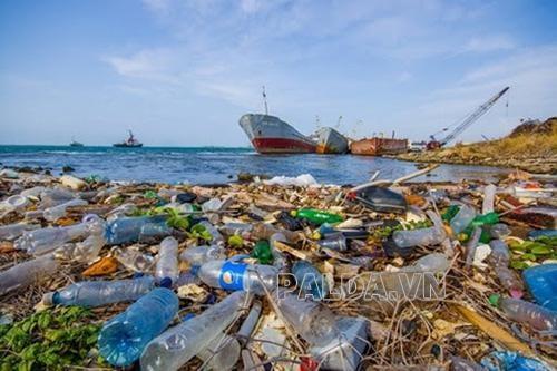 rác thải nhựa là thành phần gây ô nhiễm biển