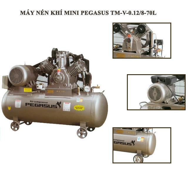 Cấu tạo của máy bơm hơi PEGASUS TM-V-0.12/8-70L