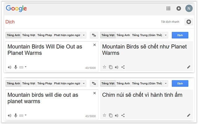 tổng hợp google dịch nói bậy