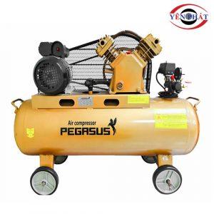 Máy nén khí công nghiệp Pegasus TM-V -0.25/8-120L